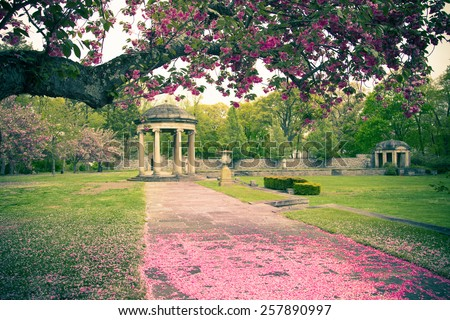 Spring cherry blossoms in bloom at garden with stone gazebo seen in the distance.  Pastel toned image. - stock photo