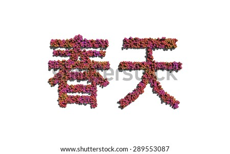 spring chinese text flower with white background concept of typography - stock photo