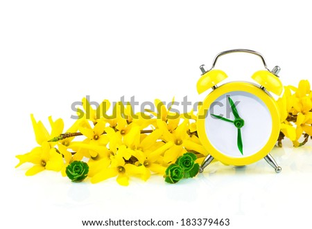 Spring concept with clock and yellow flowers forsythia on white - stock photo