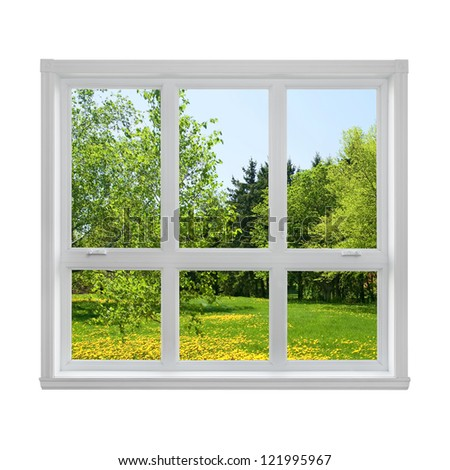 Spring dandelion lawn and green trees seen through the window. - stock photo