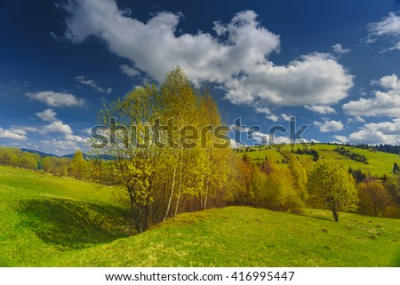 Spring day with blooming hills in warm sunlight. Dramatic and picturesque green meadow scene.Carpathian mountains, Ukraine, Europe. - stock photo