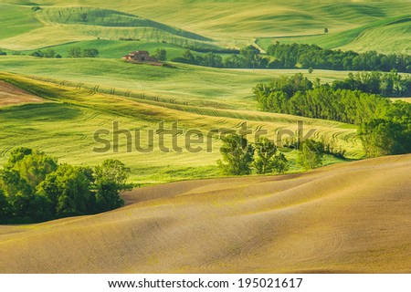 Spring field around Pienza, on the road between Siena and Rome - stock photo