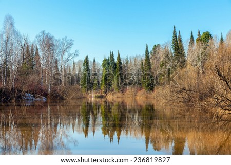 Spring flood Chet river in Siberia - stock photo