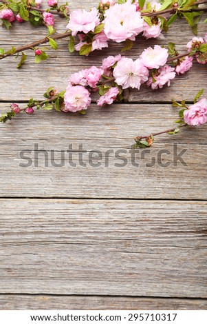 Spring flowering branch on grey wooden background - stock photo