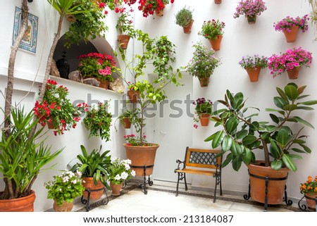 Spring Flowers Decoration of Old House, Spain, Cordoba Patio Fest, Europe - stock photo