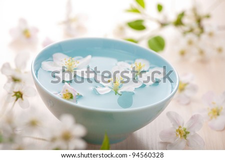 spring flowers for spa and aromatherapy - stock photo