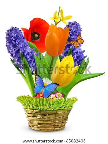 Spring flowers in a decorative pot - stock photo