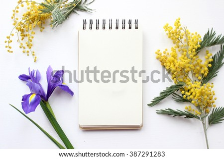 Spring flowers Mimosa and Iris Mockup. Post blog social media 8 march. Top view with blank space. Stylish trendy photography. - stock photo