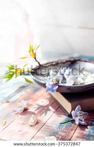 Spring flowers on wooden dish with a book near a window. Natural light setup, toned photo. Relaxation, spare time and hobby, nostalgia and romantic mood concepts. Shallow focus on flower on plate. - stock photo