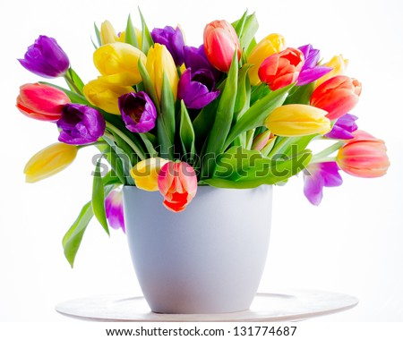 Spring flowers,  tulips - Colorful fresh spring tulips flowers in vase - stock photo