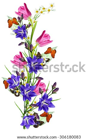 spring flowers tulips isolated on white background.snowdrops flowers and butterflies - stock photo