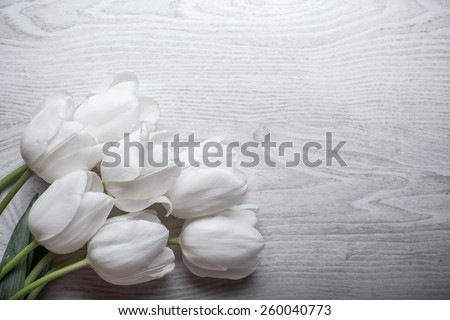 spring flowers white tulips bouquet on wooden background present for holidays mother day easter valentines wedding - stock photo