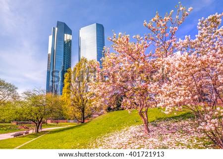 Spring, Frankfurt, Skyscrapers,  - stock photo