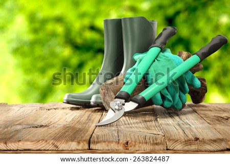 spring garden background and shoes of green color on wooden table  - stock photo