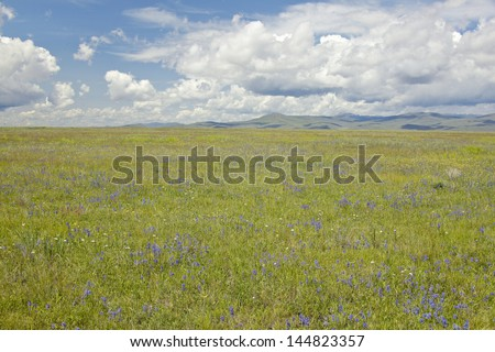 Spring grasslands and mountains in Centennial Valley near Lakeview, MT - stock photo