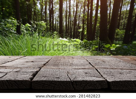 Spring green background. Summer environmental landscape  - stock photo