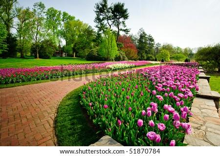 Spring in Longwood Gardens - stock photo