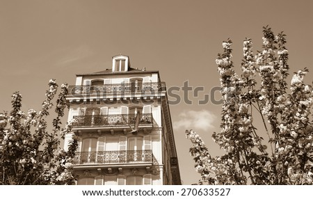 Spring in Paris. Typical Parisian buildings (Marais quarter) and blossoming trees. Aged photo. Sepia. - stock photo