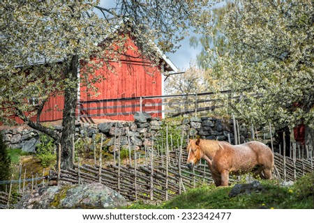 Spring in Sweden - rural image from the countryside of Smaland - stock photo