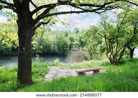 Spring Landscape. Bench under a tree by the river - stock photo