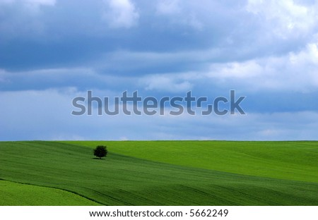 Spring landscape - green fields, the blue sky and dramatic clouds - stock photo