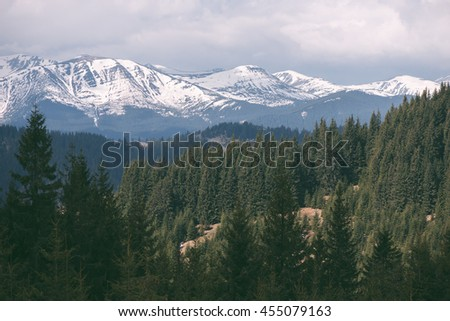 Spring landscape in mountains. Fir forest on the slopes. Tops are covered with snow. Sunny weather. Carpathians, Ukraine, Europe. Artistic style of photography processing. Low contrast, color toning - stock photo