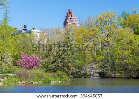 spring landscape in the Central park, New York, USA