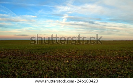 spring landscape is the field, clouds and blue sky - stock photo