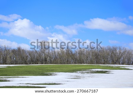 spring landscape snow melt in the field and white clouds on blue sky on a sunny day - stock photo