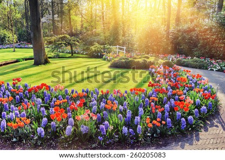 Spring landscape with colorful flowers - stock photo