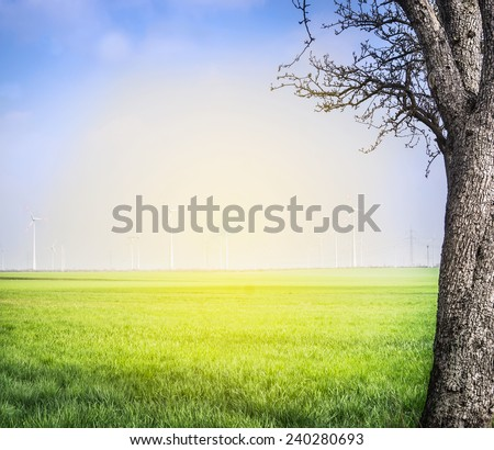 spring landscape with field and big tree over wind turbine background  - stock photo