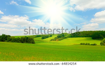 Spring landscape with green grass and blue sky - stock photo