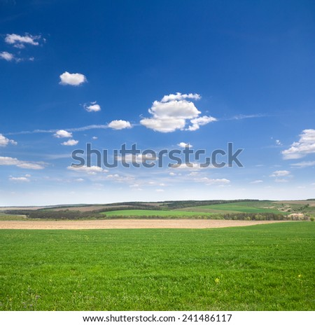 Spring landscape with  green meadow and blue sky - stock photo