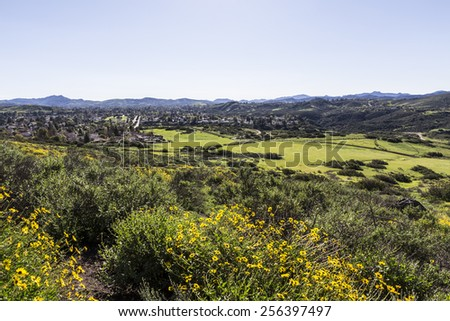 Spring meadows and wildflowers on the edge of suburban housing tracts in Thousand Oaks near Los Angeles, California.   - stock photo