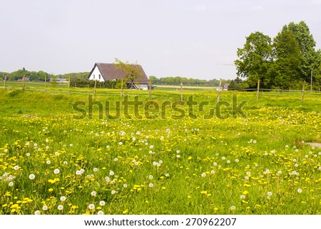 Spring meadows around a rural house, Germany - stock photo