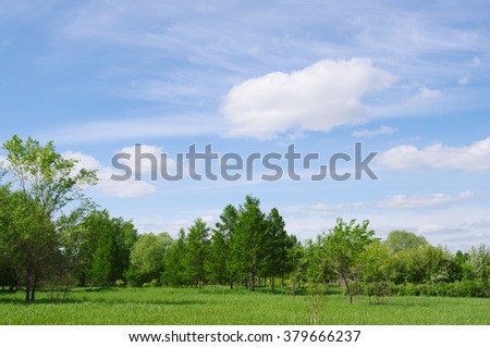spring nature landscape with fresh green grass and trees, blue clouds sky - stock photo