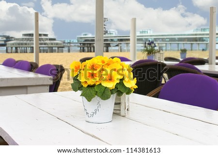 Spring on the coast. Flowers on the table in a street cafe in The Hague. Netherlands. den Haag - stock photo