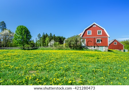 Spring on the Swedish field - stock photo