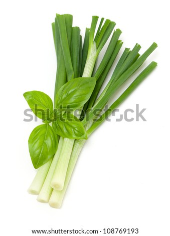 spring onion and basil - stock photo