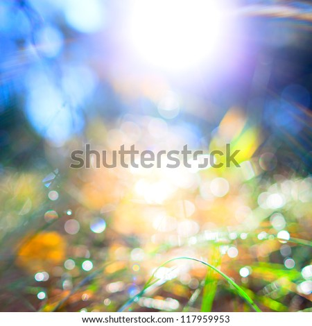 Spring or summer abstract nature background grass - stock photo