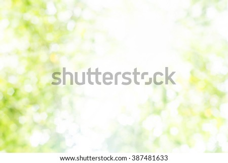 Spring or summer abstract nature over blur forest and sky and flower with De focused Bokeh textures background with light rays. Ecology, care, sun concept. Christmas, spring season concept. Eco. - stock photo