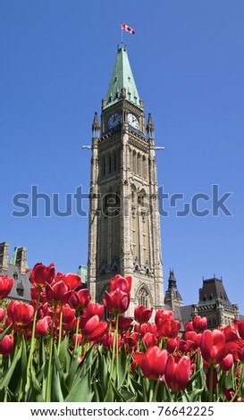 Spring Parliament - stock photo