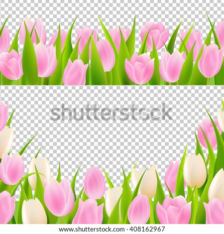 Spring Pink Tulip Borders Set, Isolated on Transparent Background - stock photo