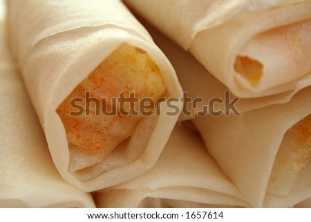 Spring rolls, not yet fried - stock photo
