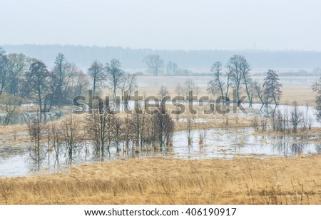 Spring scene. Kaluga region of Russia - stock photo