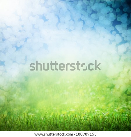 Spring sky sunny with flower field - stock photo