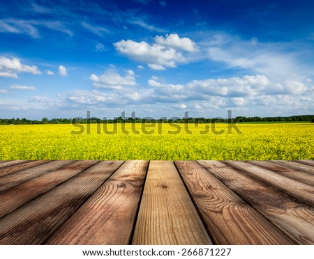 Spring summer background - yellow canola field with blue sky and wooden planks floor in front - stock photo