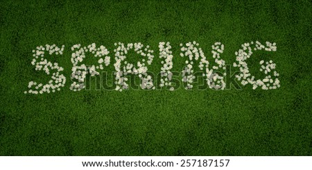 Spring text written with flowers on grass field - stock photo