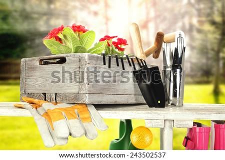 spring time and garden tools in garden of sun  - stock photo