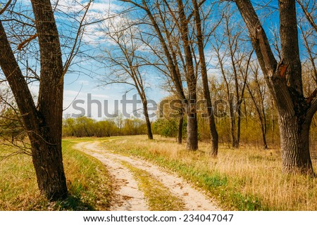 Spring Time In Countryside. Green Young Grass, Trees On Blue Sky Background - stock photo
